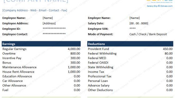 Salary Slip Format (for Excel and Word)