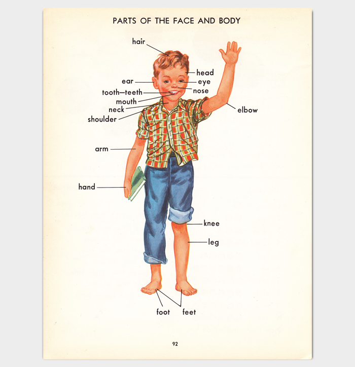 Human Body Outline Facts for Kids