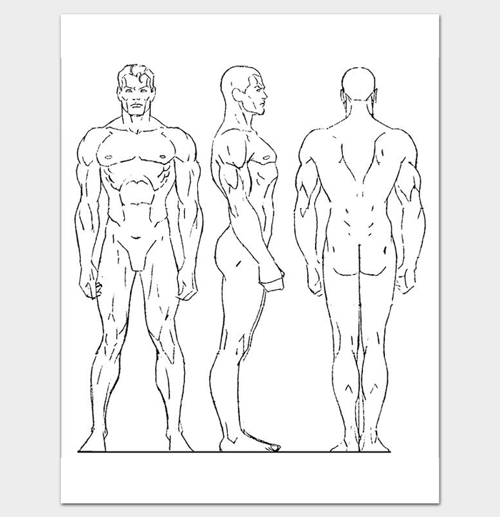 human body outline template 32 printable worksheets samples